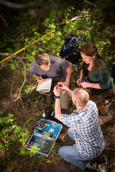 Tara Hudiburg, graduate and undergraduate students conduct research in the Experimental Forest on Moscow Mountain